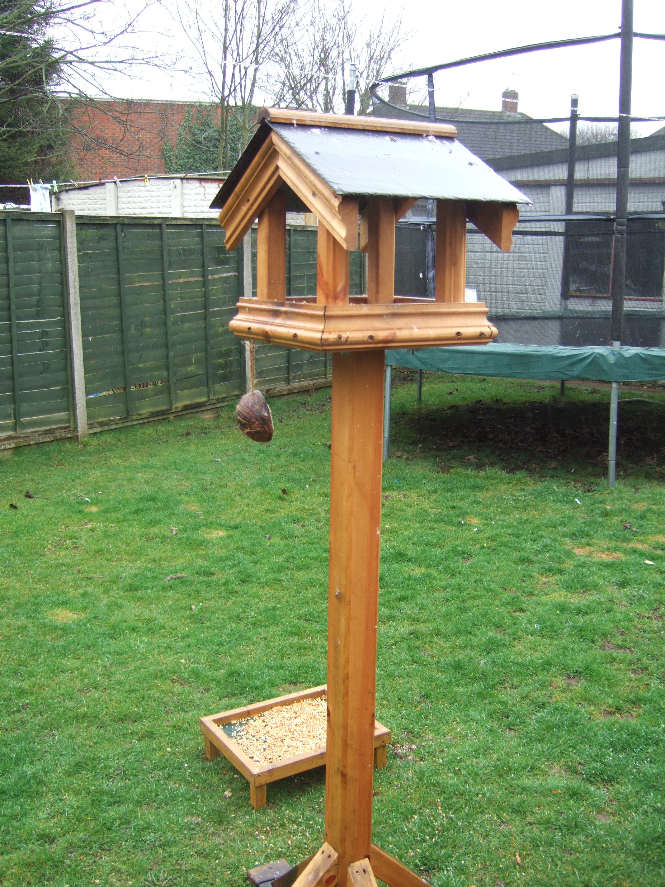 ground of feeder table a birds about and types place chat bird also img to news all page
