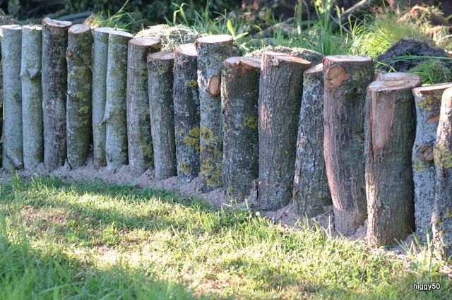 Dead tree and log pile greenfingers homes for wildlife for Log garden edging
