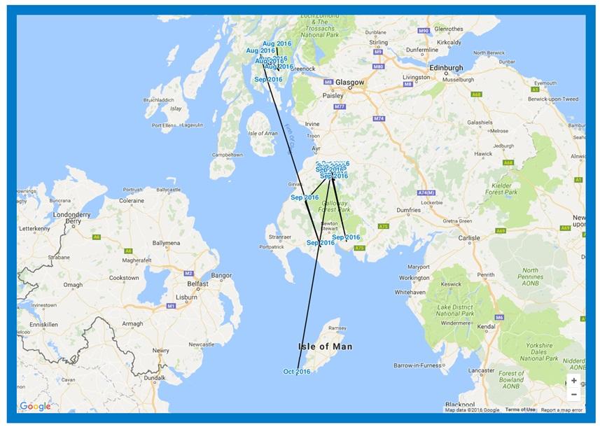 Follow that bird! Hen harrier satellite maps go live