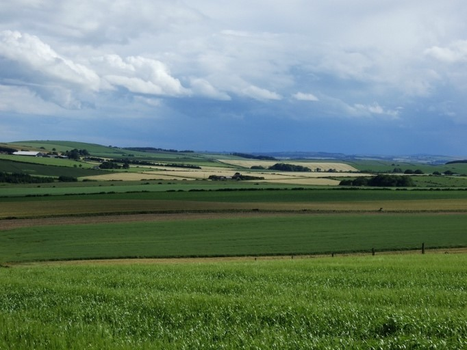 Typical lowland mixed farmland in Aberdeenshire, Northeastern Scotland. Image by Allan Perkins.