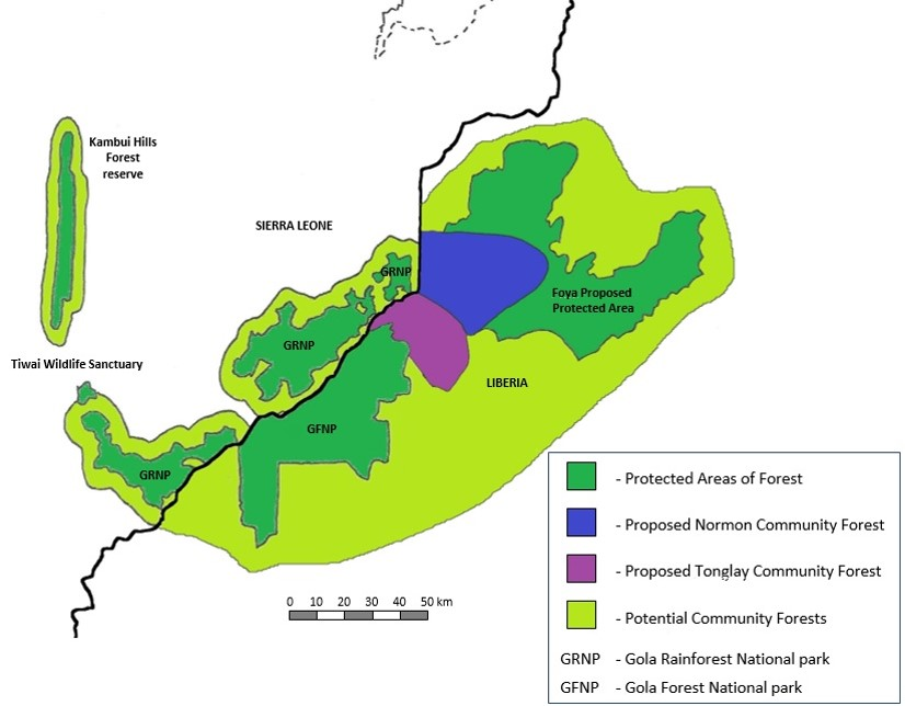 Map Of Uk Forests.The Impact Of Gola Forest In Liberia Part 1 A Focus On Forest