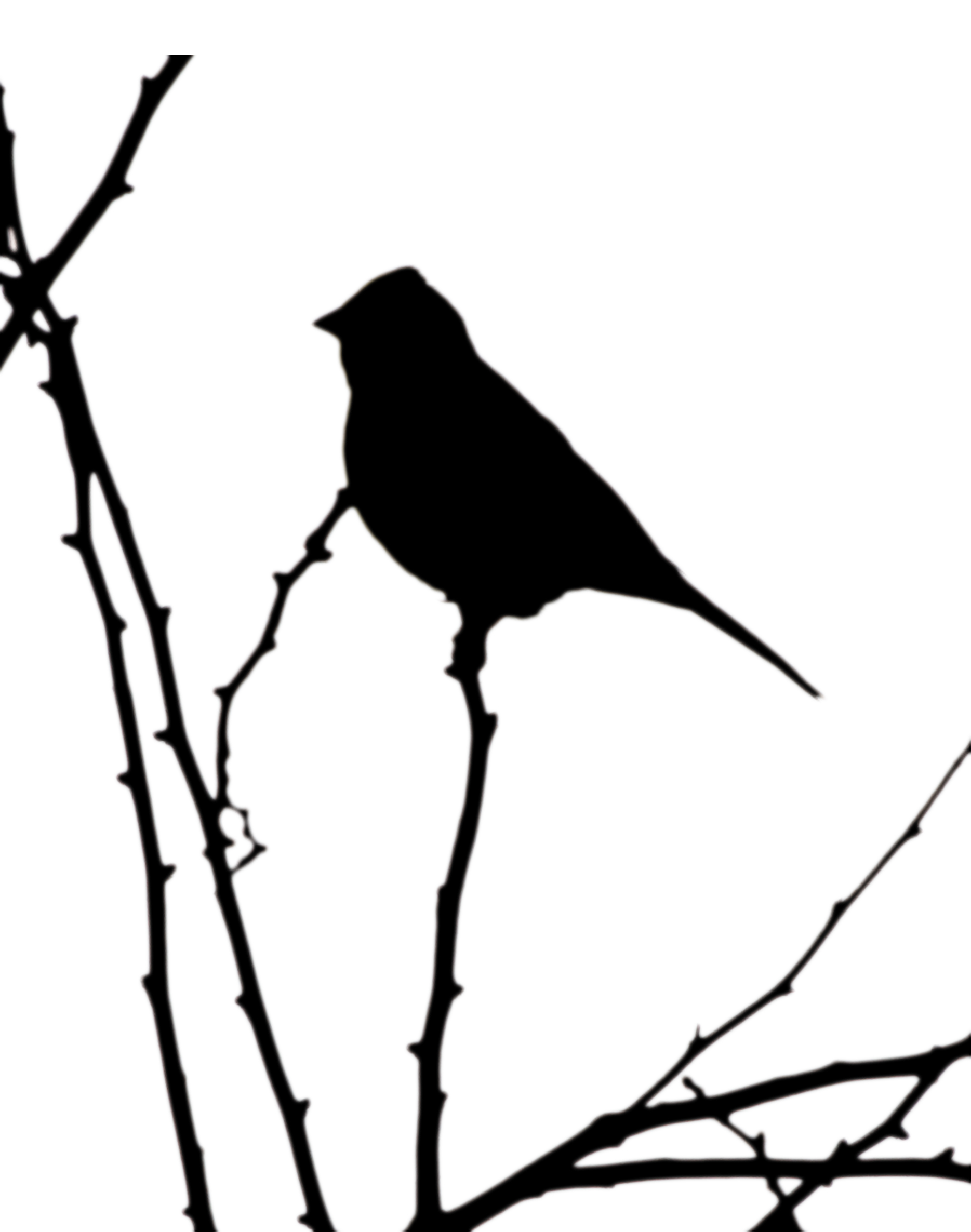 yellowhammer bird coloring pages - photo #13