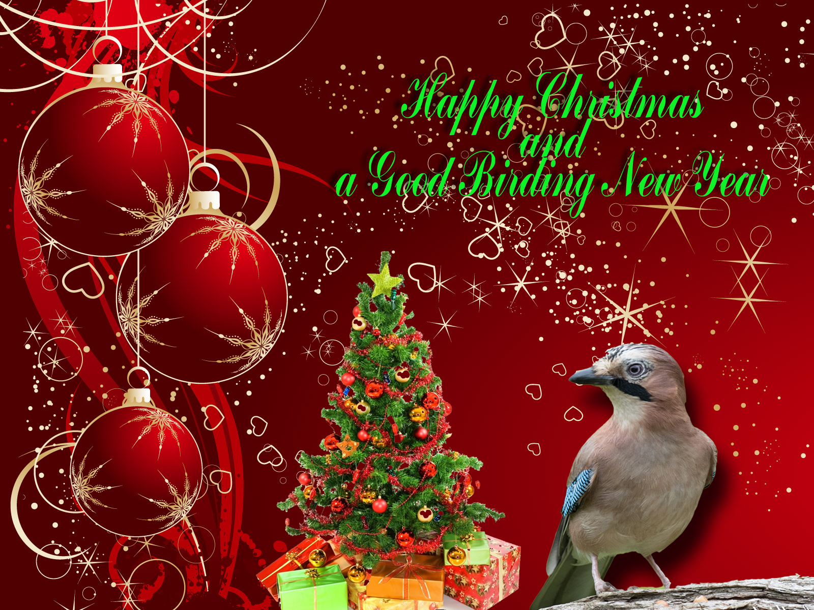 Post Box For Christmas Greetings The Tea Rooms Chat The Rspb