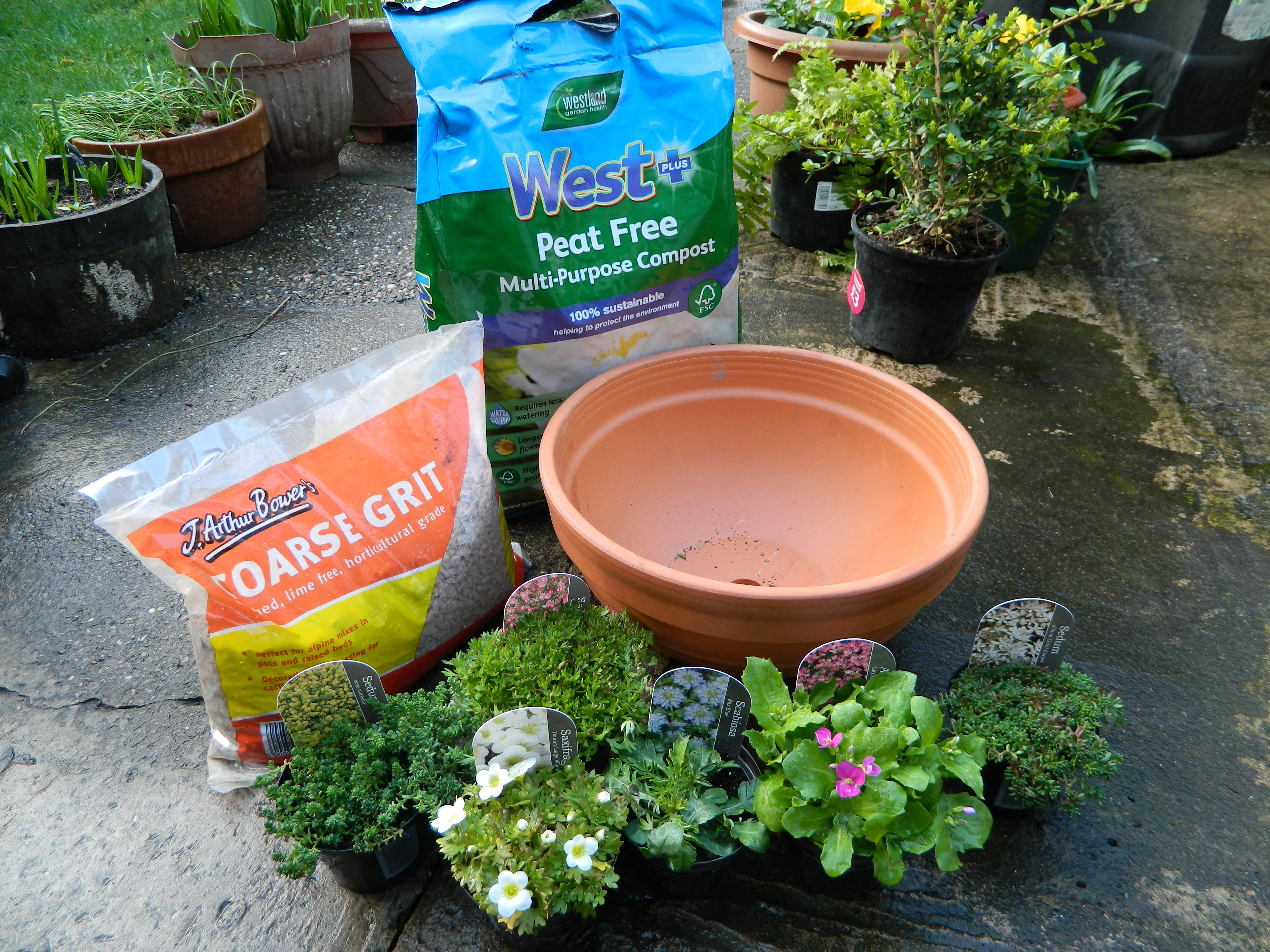 how to plant an alpine container for bees and bugs greenfingers homes for wildlife the