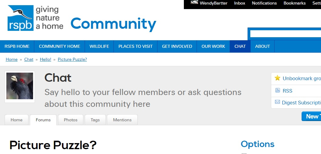 community chat Voerde