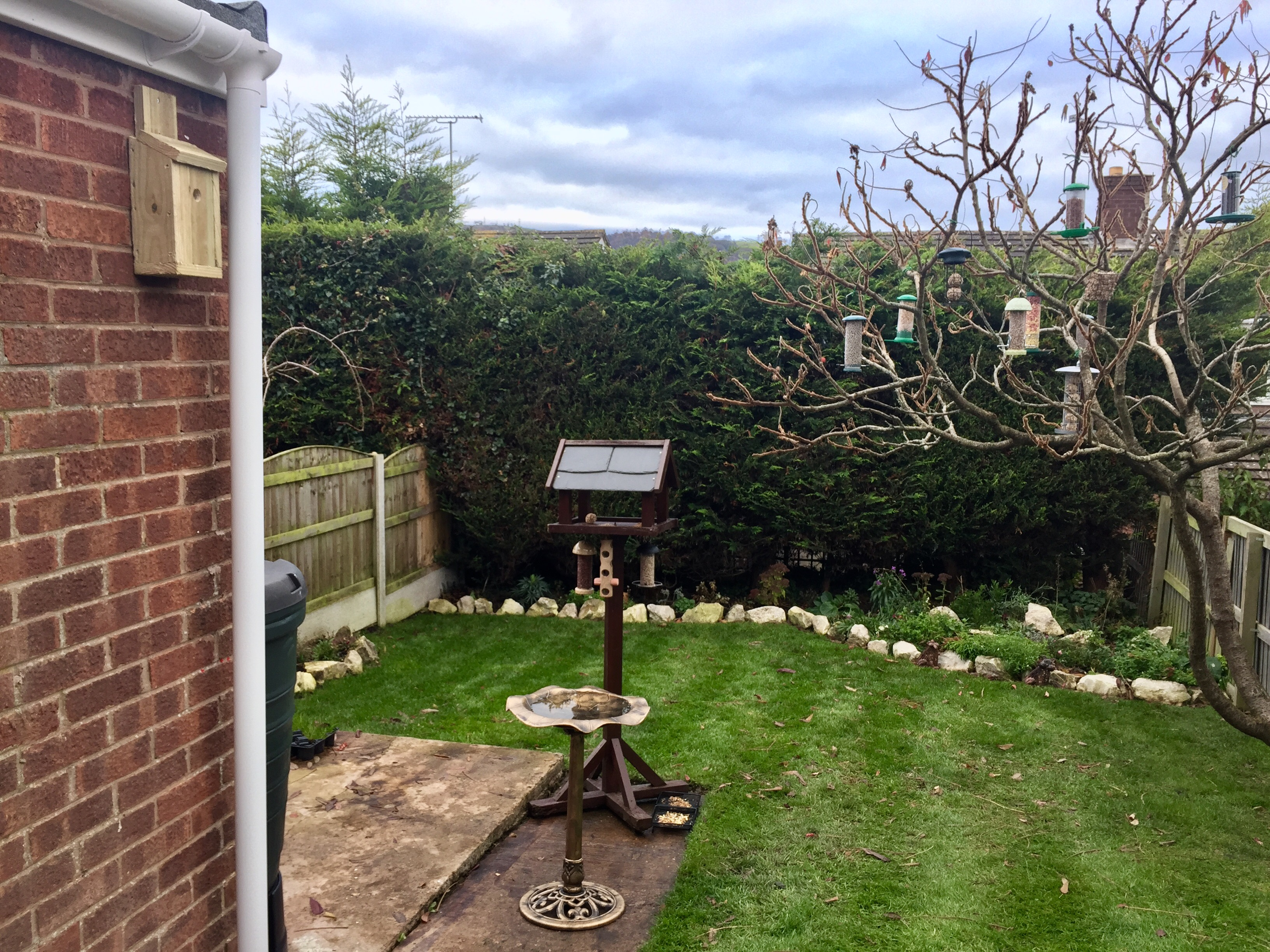 Please help i am new hello chat the rspb community - Hello this is my new picture garden interior ...