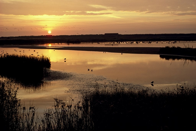 Dawn at RSPB Minsmere