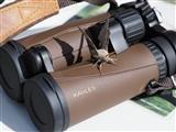 Moth hijacked my binoculars