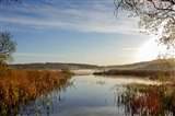 Leighton Moss in the morning
