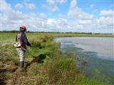 The Lagoon RSPB Exminster Marsh