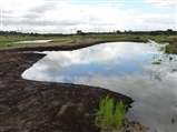 Reedbed Creation - The Finished Pools