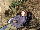 Taking it easy in the reedbed