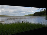 Tindale Tarn Viewpoint