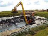 What works are happening at Wallasea Island this summer?