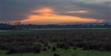 Evening Sky from Winpenny Hide