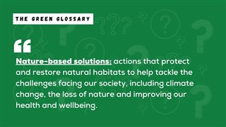 Nature Based Solutions Explanation
