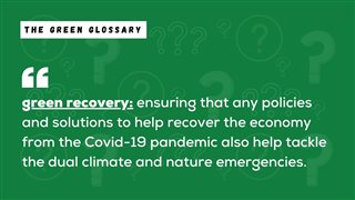 Green Recovery Explanation