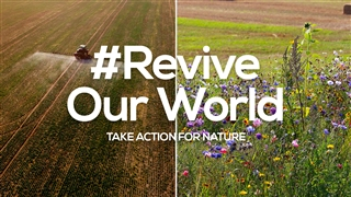 Take action for nature to #ReviveOurWorld