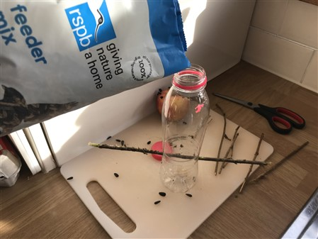 bird seed and bottle