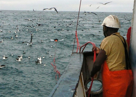 A member of crew deploys a bird scaring line in the Namibian trawl fishery