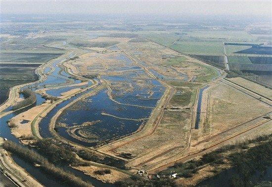 Aerial shot of RSPB Lakenheath Fen. Image by the RSPB (rspb-images.com)