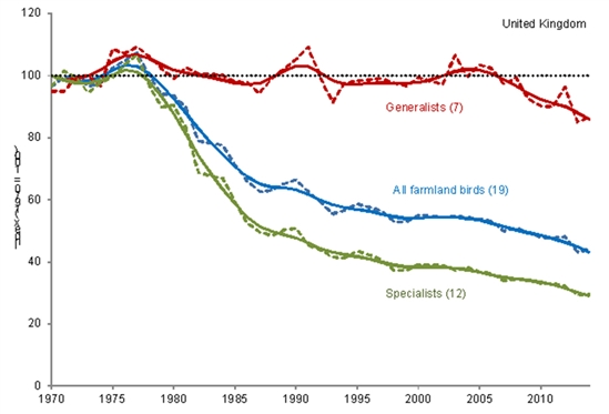 Population trends of farmland birds in the UK: Source: RSPB, BTO, JNCC, Defra.