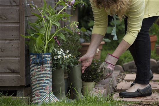 Old wellies used as planters Image credit Andy Hay
