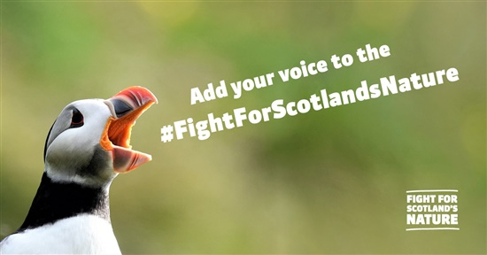 puffin with mouth wide open. Text reads 'Add your voice to the # fight for Scotland's Nature'