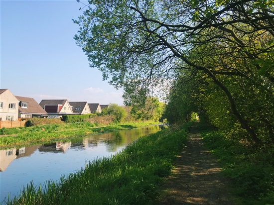 path by canalside with trees and some grasses. house rooves visible in background