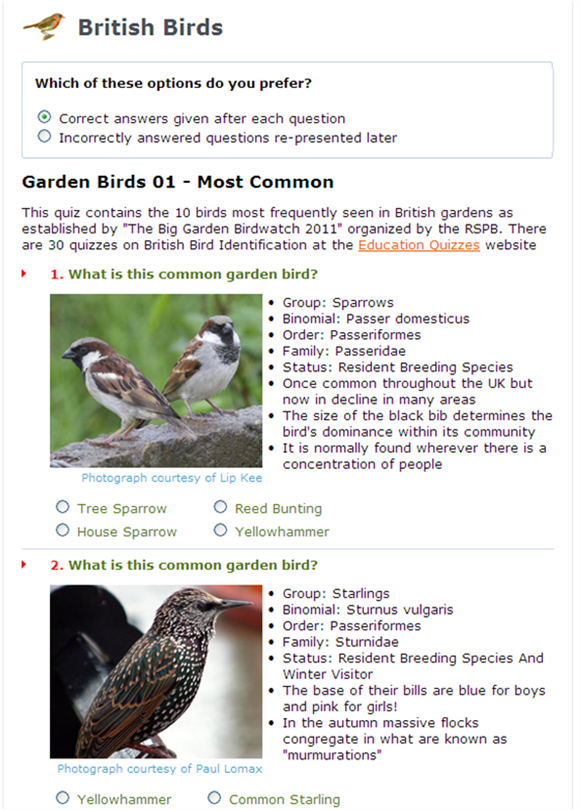 Test their knowledge with these free bird quizzes - Learning