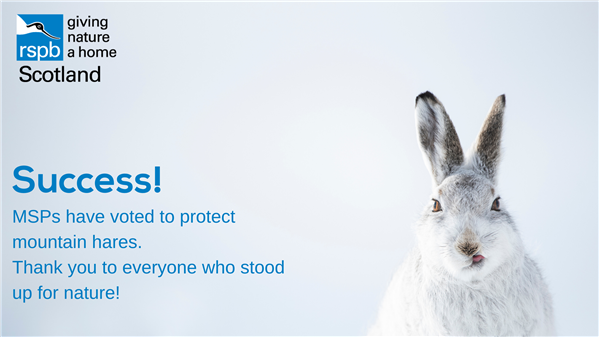 image of mountain hare with rspb scotland logo