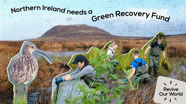 Northern Ireland needs a Green Recovery Fund